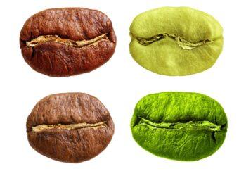 Kaffeebohnen in unterschiedlichen Röst-Graden.