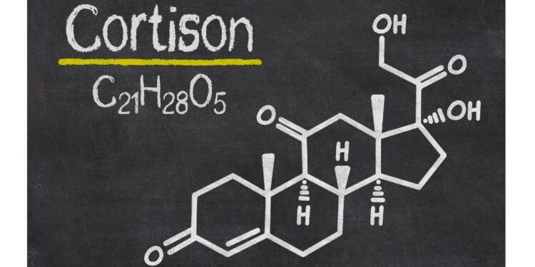 Auf einer Schiefertafel steht die chemische Formel von Cortison.