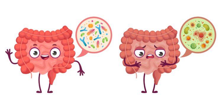 Eine comichafte Darstellung eines Darms mit gesunden Bakterien und eines Darm mit schädlichen Bakterien.