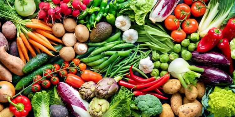 Eine Auswahl an frischem Gemüse