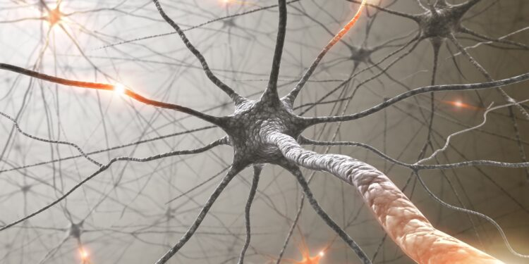 Grafische Darstellung von Nervenzellen.