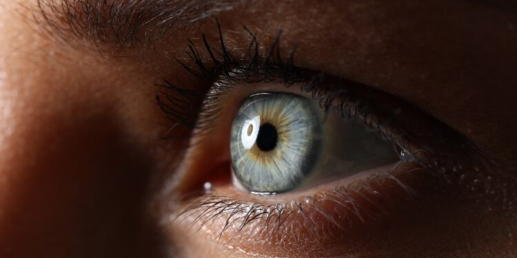 Das Auge einer Frau in Nahaufnahme.