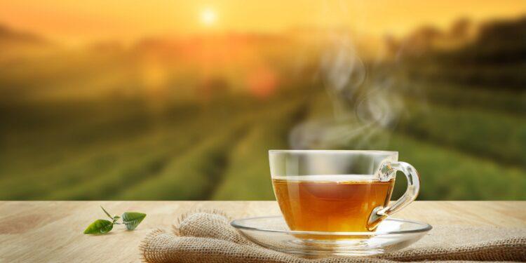 Tasse heißer Tee und Teeblatt auf einem Holztisch mit Teeplantage im Hintergrund