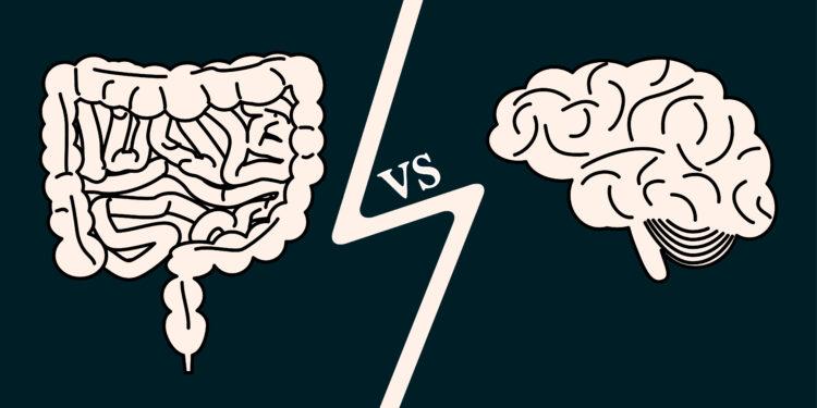 Eine comichafte Darstellung des Darms und des Gehirns.