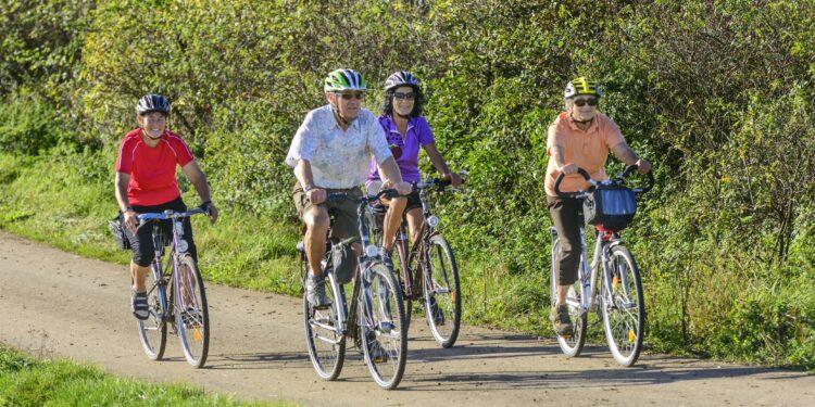 Vier ältere Personen beim Fahrradfahren in der Natur