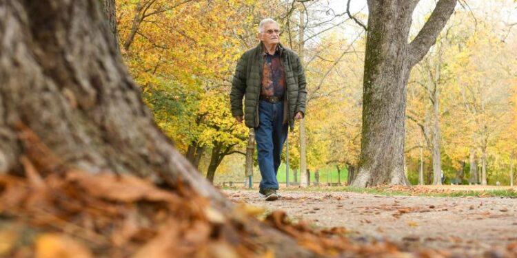 Ein älterer Mann geht in einer herbstlichen Parklandschaft spazieren.