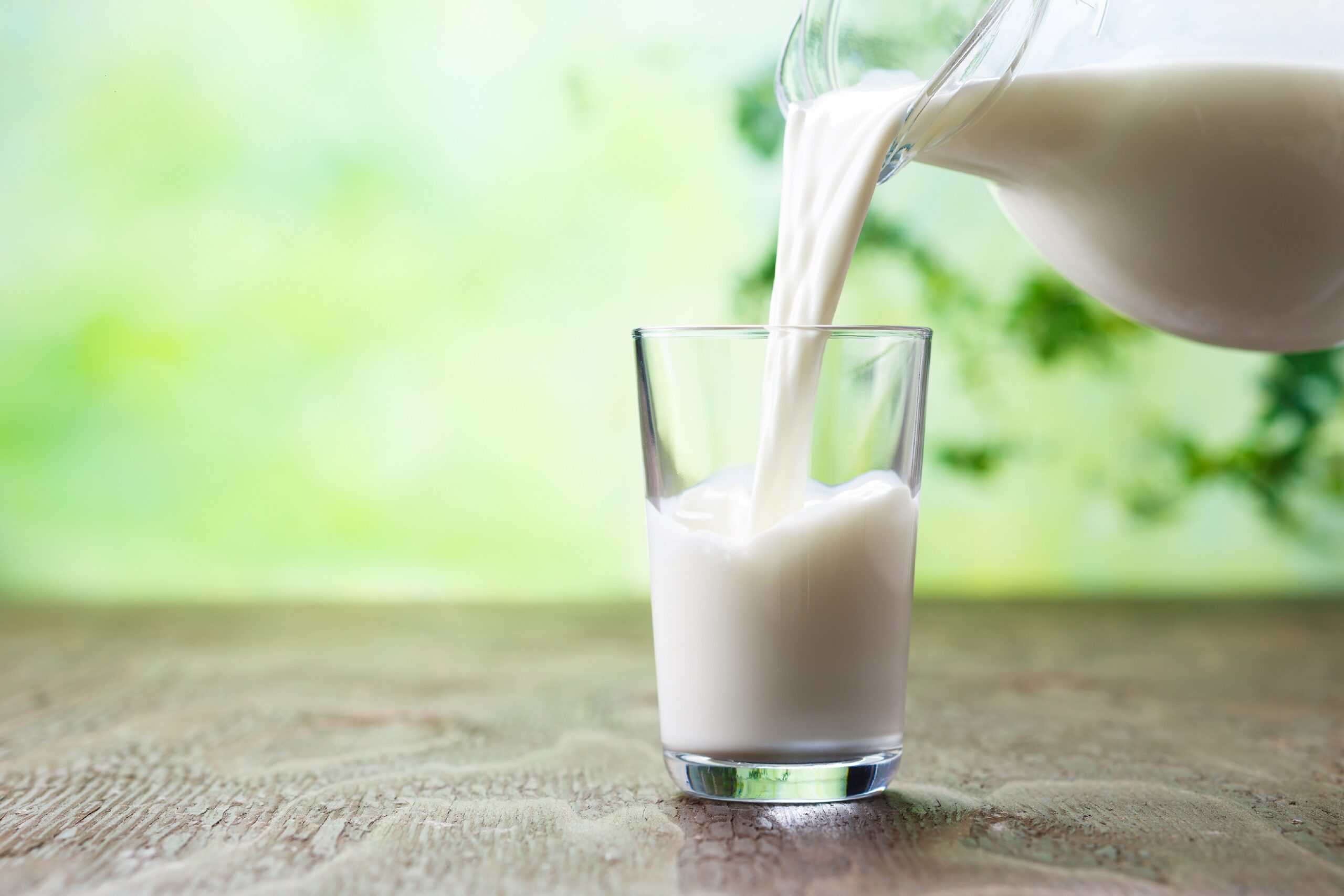 Krankmachende-Keime-in-Rohmilch-Proben-nachgewiesen