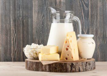 Auswahl an Milch und Käseprodukten.