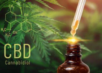CBD-Tropfen vor einer Cannabispflanze.