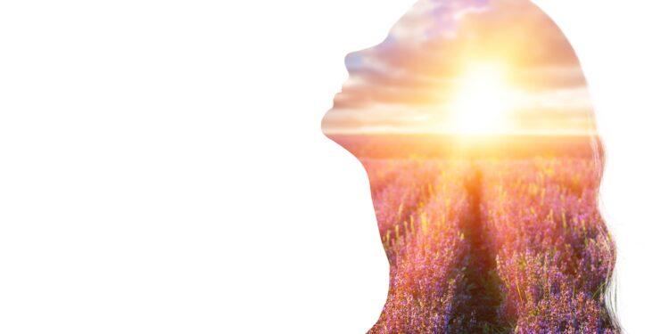 Ein Sonnenaufgang über einem Lavendelfeld im Umriss einer weiblichen Silhouette.