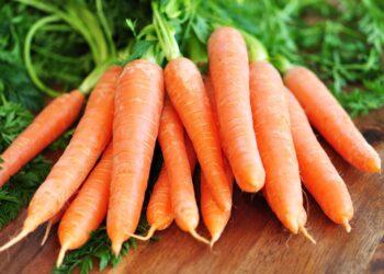 Frische Karotten auf einer Holzplatte