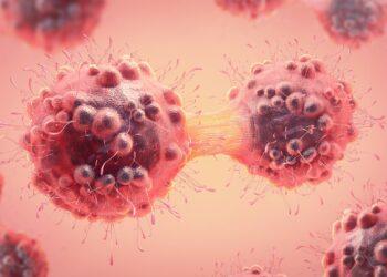 Grafische Darstellung einer Krebszelle bei der Zellteilung.