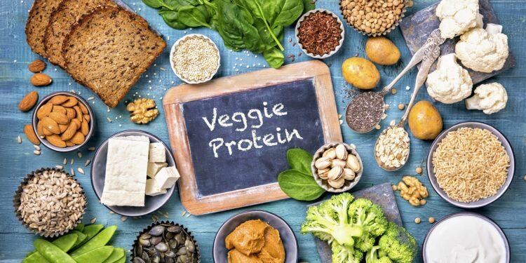Eine Auswahl an Lebensmitteln, die reich an pflanzlichem Protein sind.