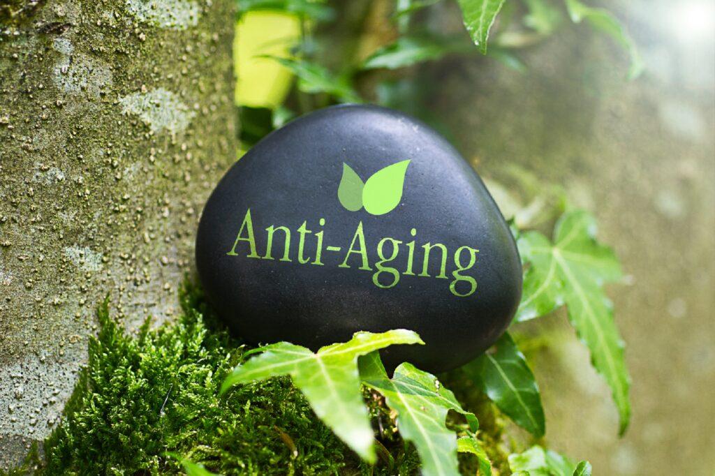 Schwarzer Stein mit der Aufschrift Anti-Aging liegt in der Natur