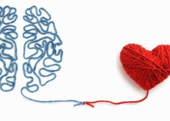 Gehirn und Herz aus Wolle einem Knoten verbunden.