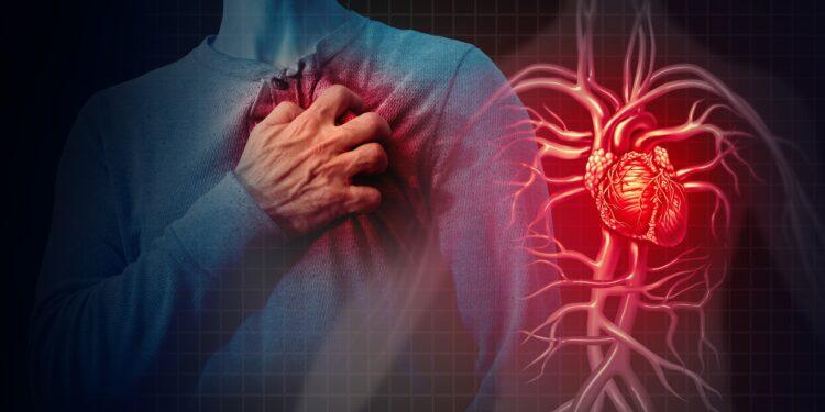 Mann fasst sich an die Brust, rechts daneben dargestellt sein Blutgefäßesystem mit rot leuchtendem Herz.