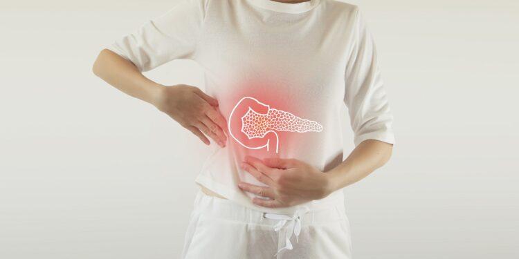 Position der Bauchspeicheldrüse im menschlichen Körper.