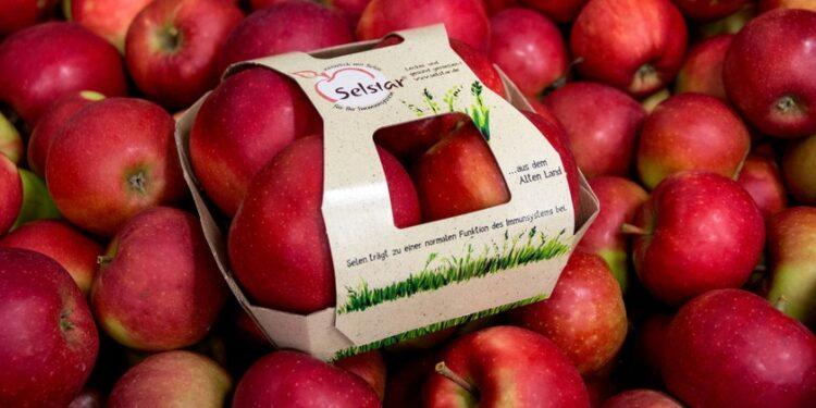 Neu Äpfel mit dem Markennamen Selstar