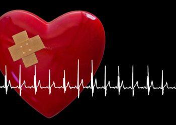 Roter Hers mit Pflaster, davor eine EKG-Kurve.