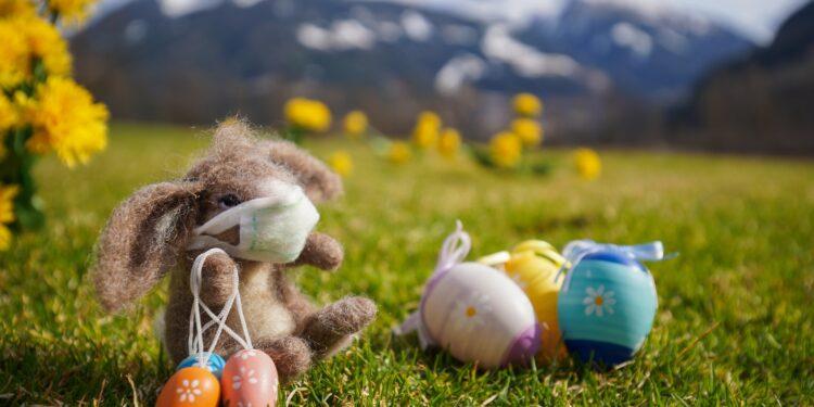 Ein Osterhase mit Mundschutz sitzt auf einer Wiese neben drei Ostereiern.