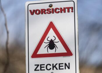 Ein Schild mit der Aufschrift: Vorsicht Zecken.