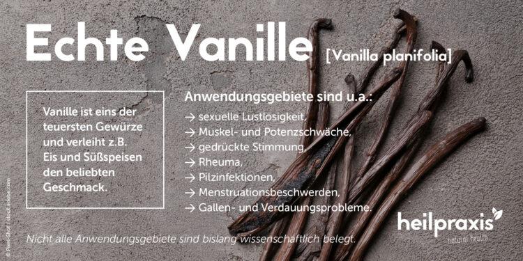 Die wichtigsten Anwendungsgebiete von Vanille als Heilpflanze in der Übersicht