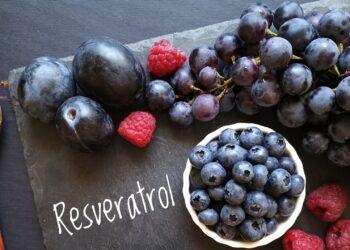 Schriftzug Resveratrol mit Weintrauben, Pflaumen, Blaubeeen, Himbeeren und einem Löffel Kakaopulver.