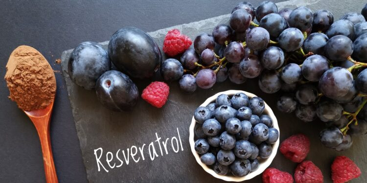 Lettering Resveratrol with grapes, plums, blueberries, raspberries and a spoon of cocoa powder.