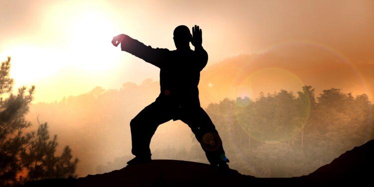Ein Mann führt Tai Chi-Übungen in der Natur bei Sonnenaufgang durch.