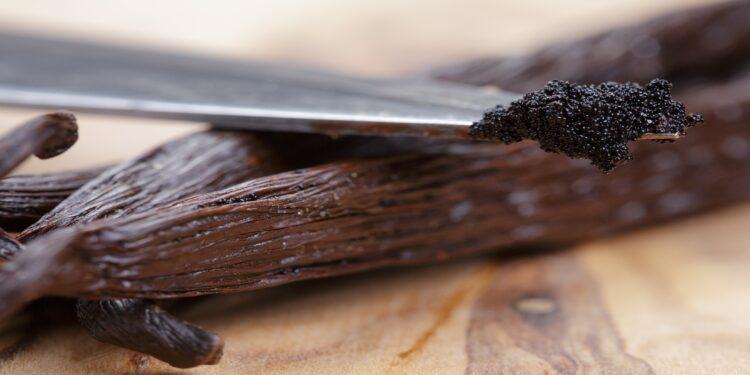 Vanilleschoten, aus denen mit einem Messer das Mark herausgekratzt wird