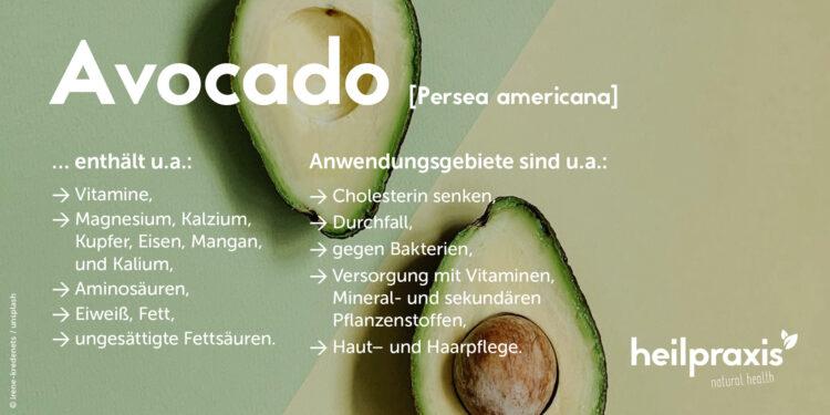 Infobild zur Avocado