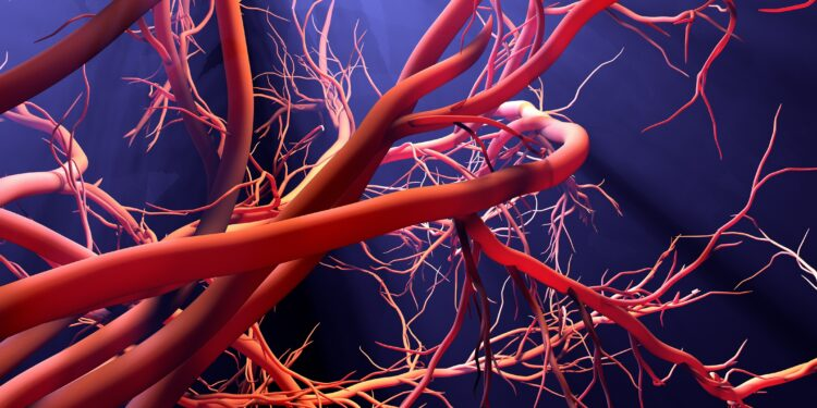 Grafische Darstellung von Blutgefäßen.