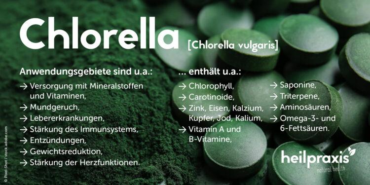 Chlorella in Pulfer- und Tablettenform