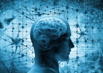 Schematische Darstellung eine Kopfes mit Gehirn in blau..