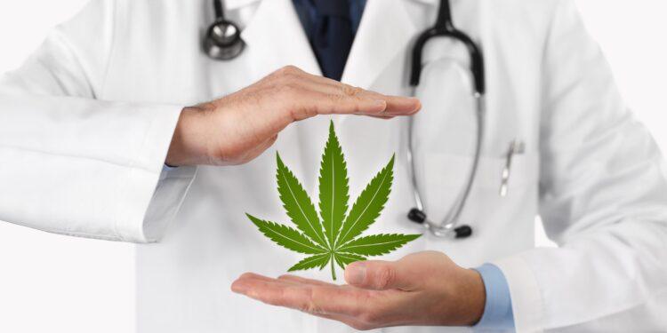 Arzt hält Hände um ein Cannabis-Symbol