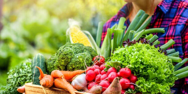 Bäuerin mit Korb voller frischem rohem Gemüse in den Händen