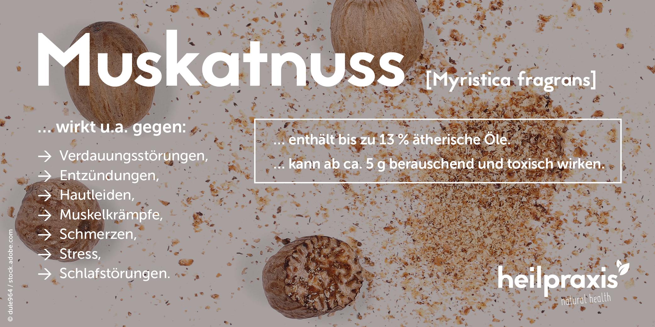 Muskatnuss Liste Anwendungsgebeite, Inhaltsstoffe und Wirkungen
