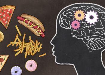 Grafische Darstellung von fettigen Lebensmitteln und einer Silhouette eines Kopfes samt Gehirn.