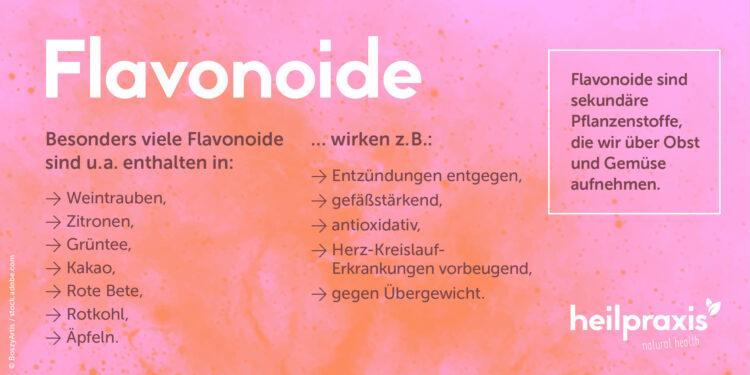 Übersicht über die wichtigsten Wirkungen von Flavonoiden und Nahrungsmittel, die Flavonoide enthalten