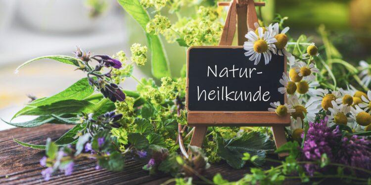 Schild mit der Aufschrift Naturheilkunde auf einer kleinen Staffelei mit verschiedenen Heilpflanzen dekoriert